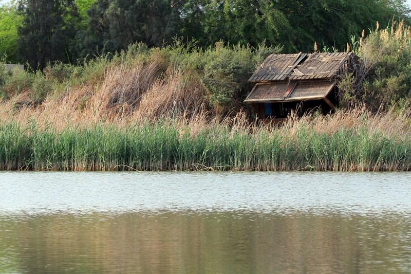 אגם אניטה המחודש - צילום: נועם וייס